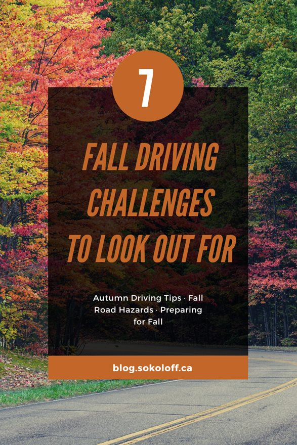 Autumn Safety Tips for Drivers in Toronto